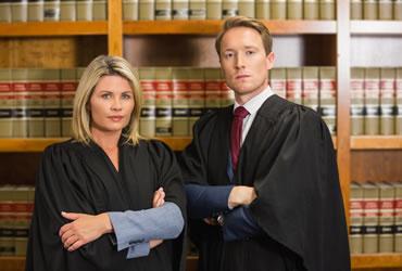 Tema avocati - 0
