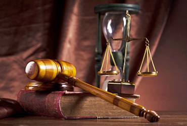 Tema avocati - 2